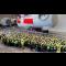 Drempelhulpen in Siemens fabriek